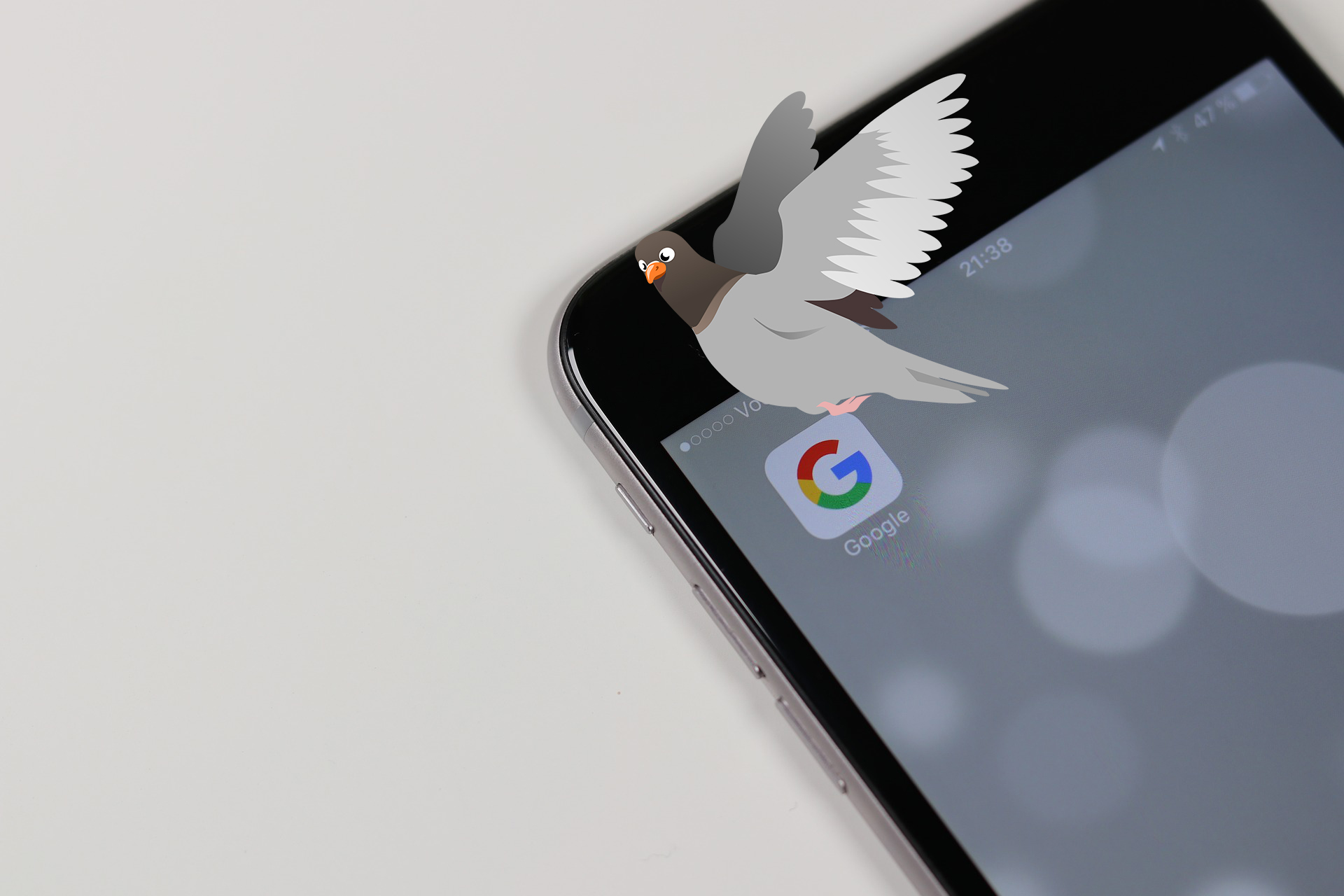 Search Engine Optimisation Google's Actual Pigeon Update