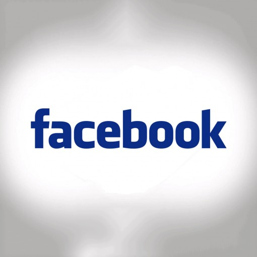 facebook logo white bg
