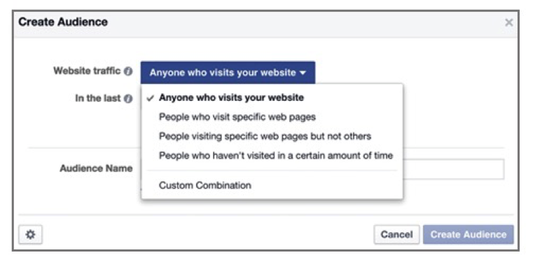 fb pixel custom audience