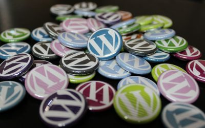 Your WordPress Support Service