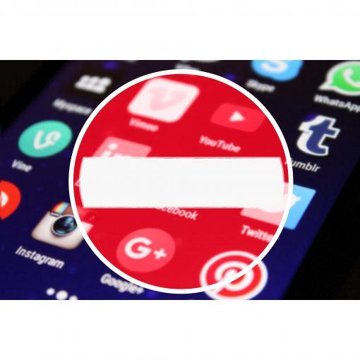 social media safety course leicester IV